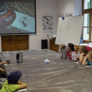 "Educational activities in FEC ""Jagiellońskie"", photo by Białowieża Forest District"