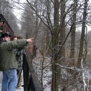 On the narrow-gauge railway, photo by Hajnówka Forest District
