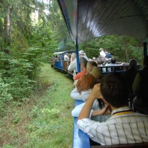 Narrow-gauge railway, photo by Hajnówka Forest District