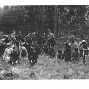 Childrens plating seeds around 30s, photo from Archive of Bialowieza Forest District