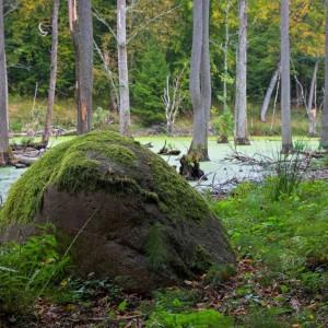 Devil's stone, photo by Sławomir Kowalczyk